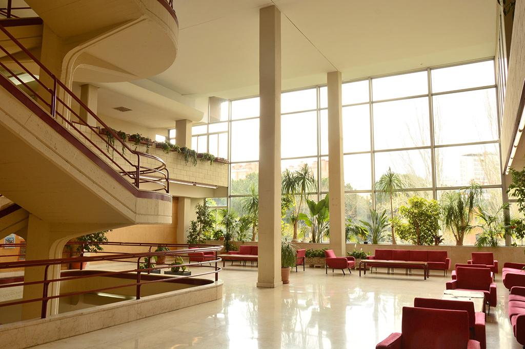 Colegio Mayor Mendel